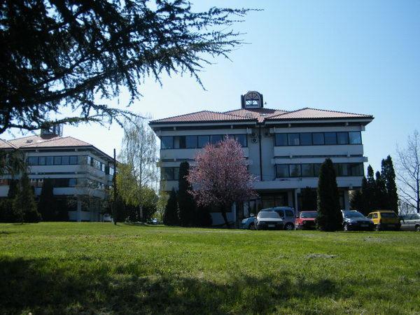 lola-institut-0106.jpg
