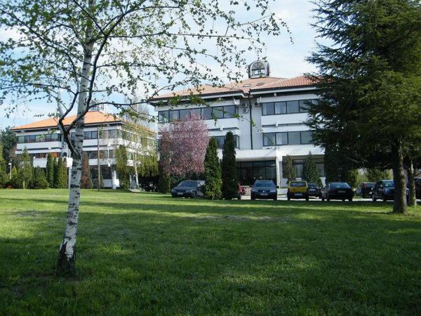lola-institut-0124.jpg